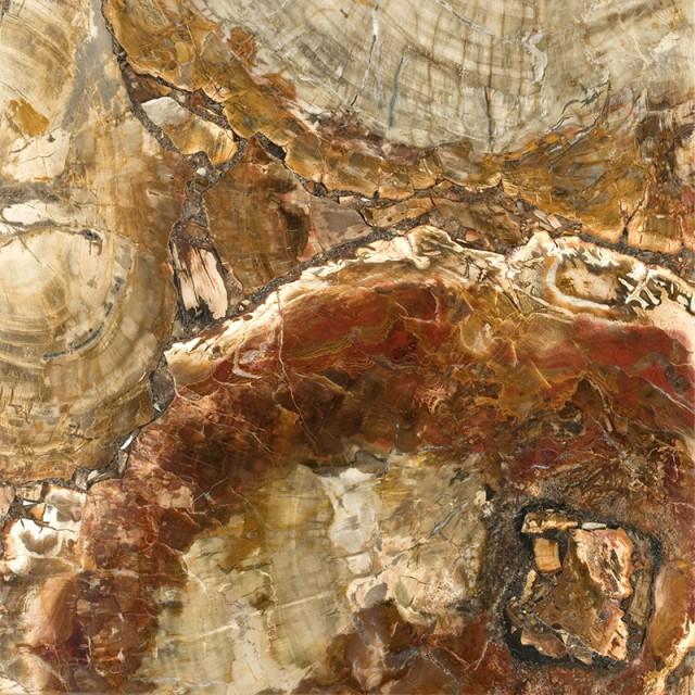 Petrified Wood Stone Finish