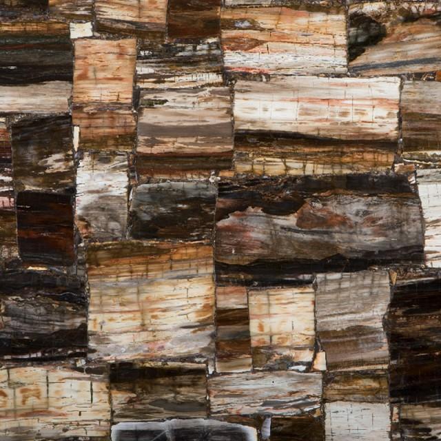 Petrified Wood Classic Stone Finish